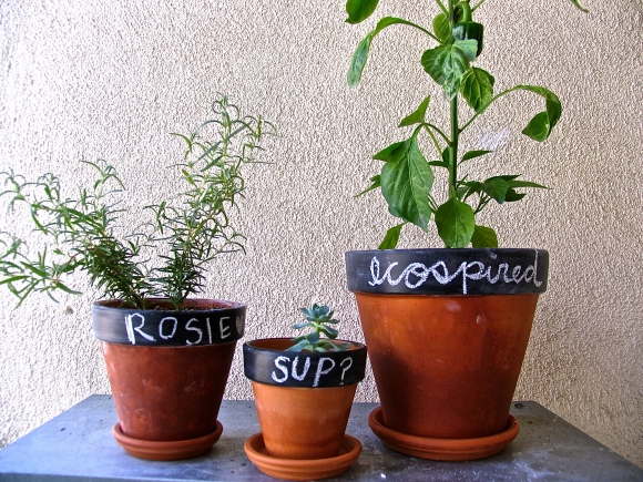Chalkboard Pots at Ecospired.com