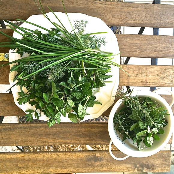 Rosemary, grapefruit mint, chives, dill and parsley
